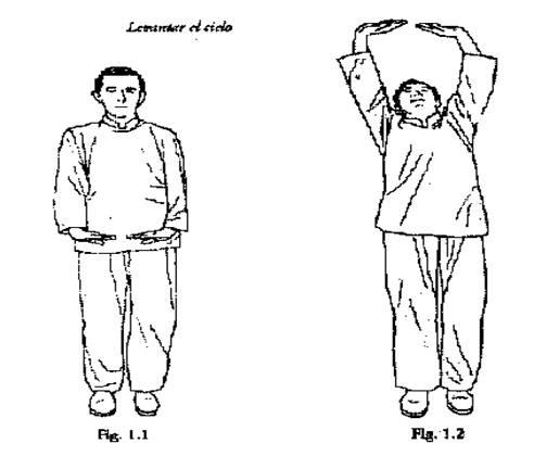 El tratamiento de varikoza a la tromboflebitis