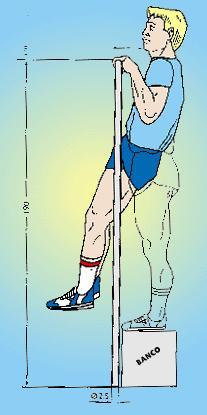 test de flexiones de brazos en barra