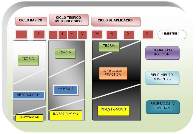 El Diseño Curricular Universitario Para La Formación De