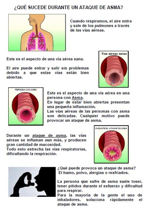 u00bfsaben nuestros alumnos qu u00e9 es el asma
