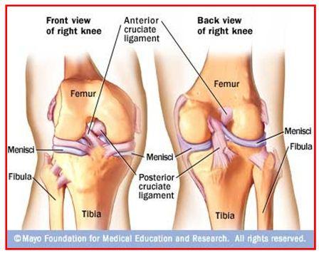 lesiones en el ligamento: