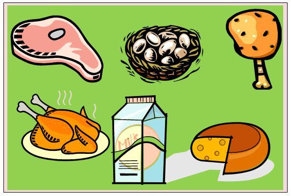 La alimentación como aspecto fundamental para una vida saludable