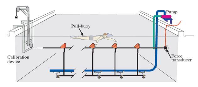 Fatores que afetam à propulsão durante o nado