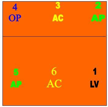 Representação das funções dos jogadores no sistema de jogo 5 x 1 70fad64163260