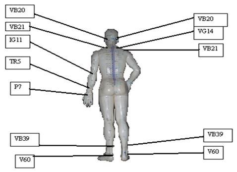Quien cura la hernia intervertebral sheynogo del departamento de la columna vertebral