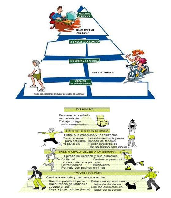 licenciado actividad fisica deporte: