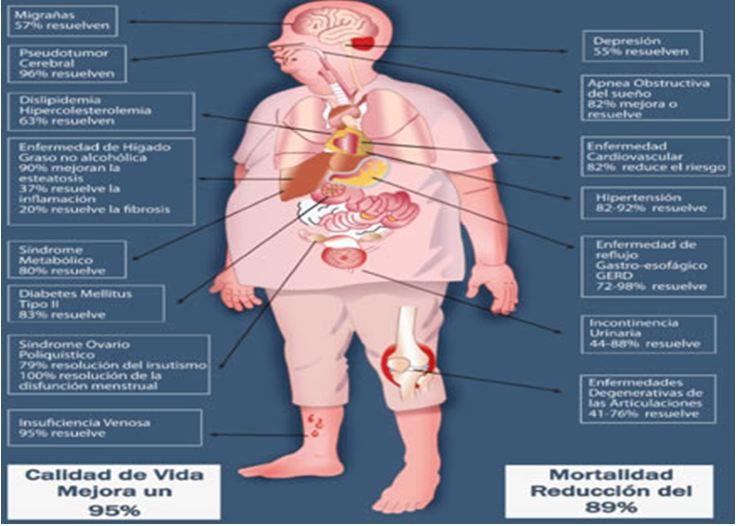 Presión Alta En El Embarazo Síntomas Cómo Bajarla Y Riesgos  Tua Saúde