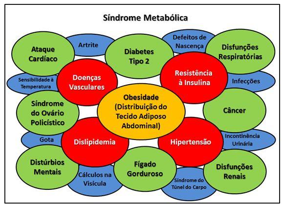 Resultado de imagem para síndrome metabólica infantil
