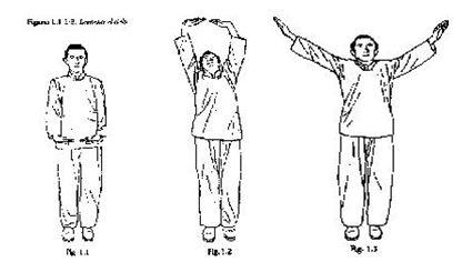 ejercicios chi kung para pulmones