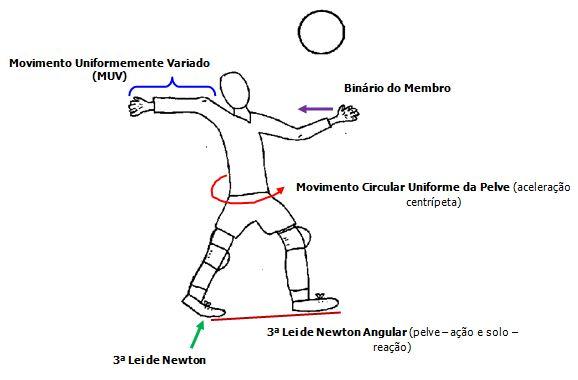 33884947b4eb9 Figura 7. A preparação para o golpe na bola o voleibolista lança a bola  para cima