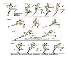 30 ejercicio basico fisico: