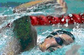 """A imagem """"http://www.efdeportes.com/efd63/natacao1.jpg"""" contém erros e não pode ser exibida."""